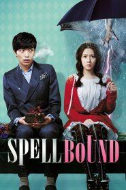 Spellbound (2011) Sinhala Subtitles